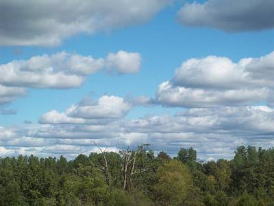 Photograph - Friendly Skies Vi by Robin Coaker