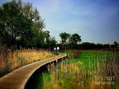 Frank J Casella Royalty-Free and Rights-Managed Images - Friends Walking the Wetlands Trail by Frank J Casella