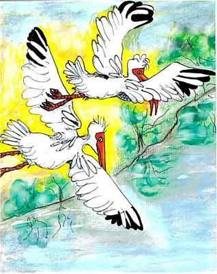 Ibis Drawing - Friendship by Carol Allen Anfinsen