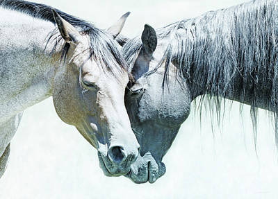 Photograph - Friendship Of Horses by Jennie Marie Schell