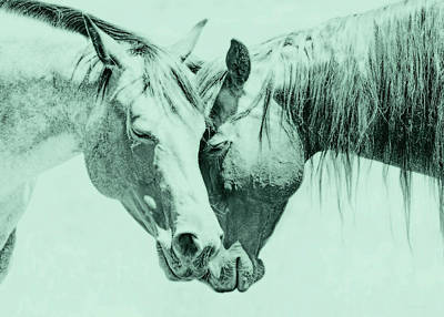 Photograph - Friendship Of Horses Teal by Jennie Marie Schell