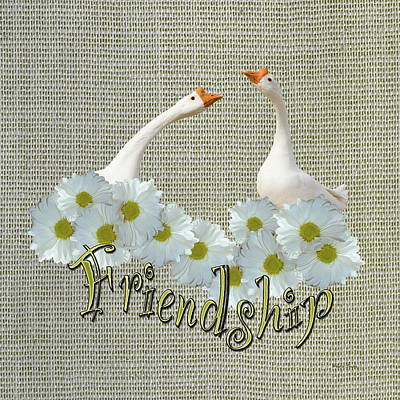 Photograph - Friendship by Phyllis Denton