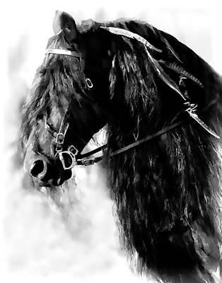 Friesian Horse Beauty Art Print by Athena Mckinzie