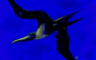 Photograph - Frigate Bird by Jim Vance