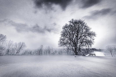 Winterscape Black And White Photograph - Frigid At Frick Park, Pittsburgh, Pennsylvania, Usa by Joseph Heh