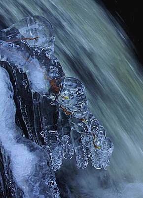 Photograph - Frigid Beauty It's All In The Details by Sean Sarsfield