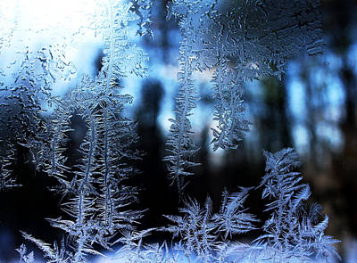 Photograph - Frigid Blue Morning by Liz Allyn