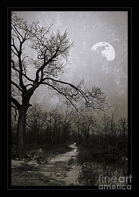 Photograph - Frigid Moonlit Night by John Stephens