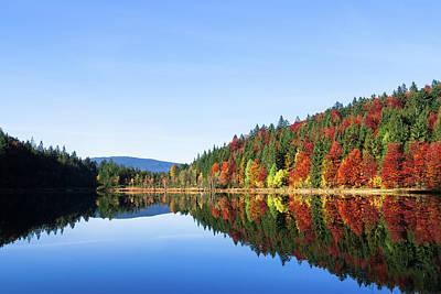 Photograph - Frillensee In Autumn by Alexander Kunz