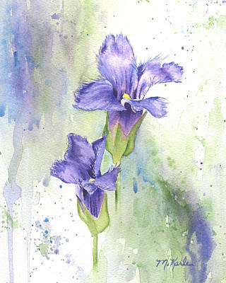 Painting - Fringed Gentian by Marsha Karle