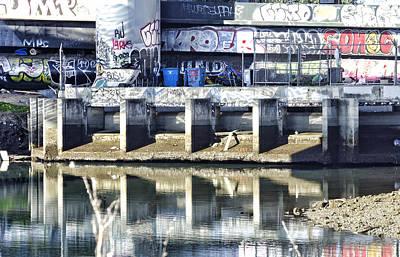 Photograph - Frisco  Graffiti by Kevin Duke