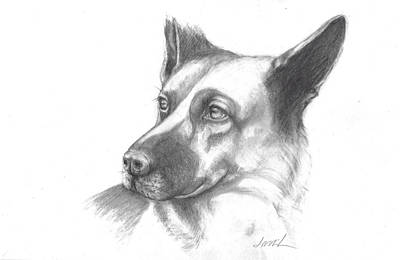 Painting - Fritz The German Shepherd by Jacki Kellum