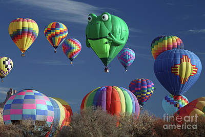 Photograph - Frog Balloon by Rick Mann