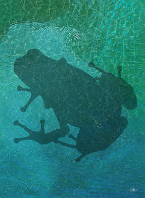 Buy Fine Art Online Digital Art - Frog  by Quim Abella