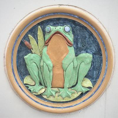 Photograph - Frog Ceramic Plaque by Joseph Skompski