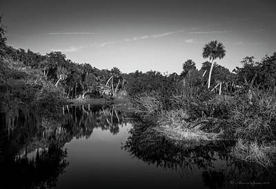 Cypress Swamp Photograph - Frog Creek 2 by Marvin Spates
