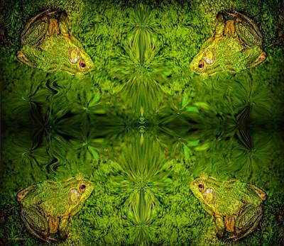Photograph - Frog Dimensions by LeeAnn McLaneGoetz McLaneGoetzStudioLLCcom