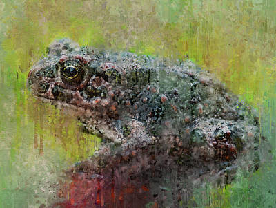 Digital Art - Frog Drips by Yury Malkov