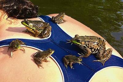 Photograph - Frog Family On Her Back by Polly Castor