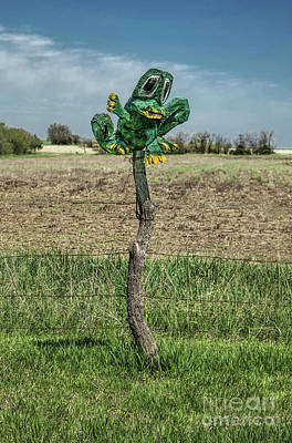 Photograph - Field Frog by Lynn Sprowl