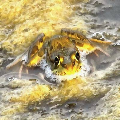 Painting - Frog In Deep Water by Tracey Harrington-Simpson