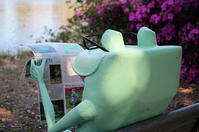 Photograph - Frog News by Cynthia Guinn