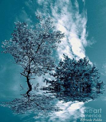 Photograph - Frollicking by Elfriede Fulda