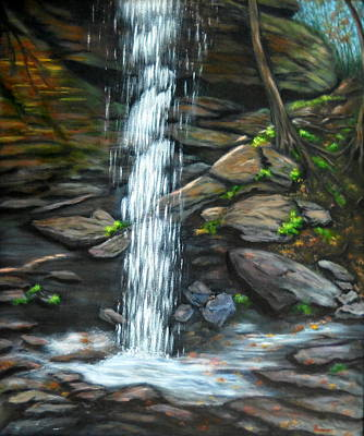 From Behind Moore Cove Falls Art Print by Sandy Hemmer