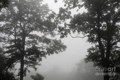 Photograph - From Inside A Cloud by Lois Bryan