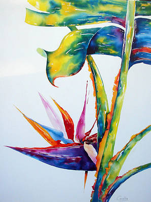 Strelitzia Painting - From My Window 2 by Julia Forman