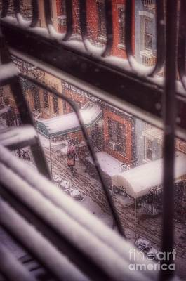Photograph - From My Window - Braving The Snow by Miriam Danar