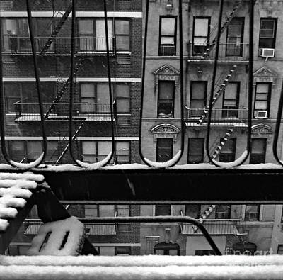 Photograph - From My Window - Rhapsody In Snow by Miriam Danar