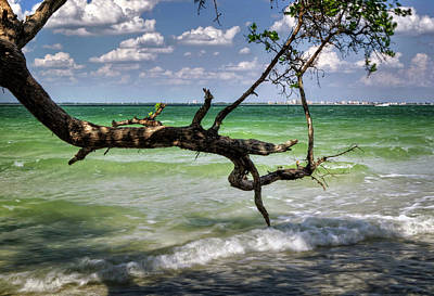 From Sanibel To Fort Myers Art Print