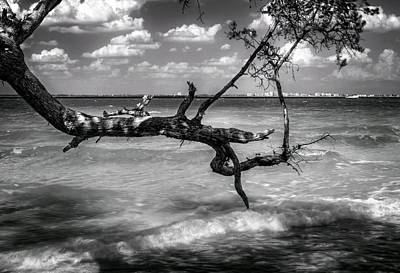Photograph - From Sanibel To Fort Myers In Black And White by Greg Mimbs