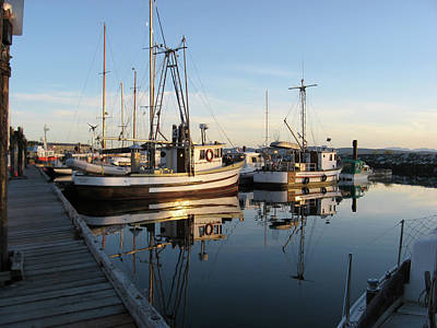 Photograph - From The Dock At Powell River by Gary Giacomelli