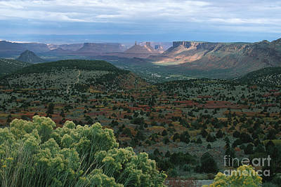 From The La Sal Mountains Art Print by Stan and Anne Foster