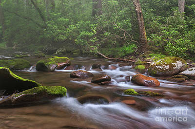 From The Mist - Oconaluftee River Art Print by Thomas Schoeller
