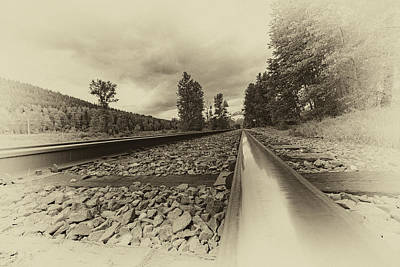 Photograph - From The Track Antique by Darcy Michaelchuk