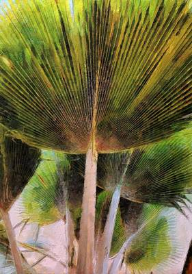 Painting - Frond by Lelia DeMello