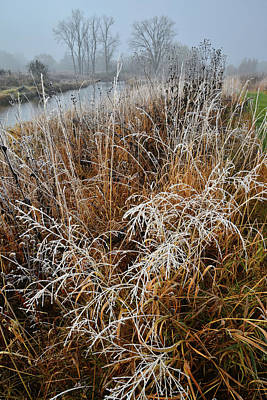 Photograph - Frost Along Nippersink Creek In Glacial Park by Ray Mathis