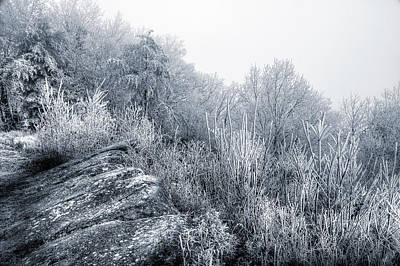 Photograph - Frost At The Top by Mike Eingle