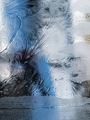 Photograph - Frost Feathers by Alana Thrower