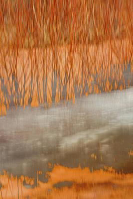 Photograph - Frost Heaves by Deborah Hughes