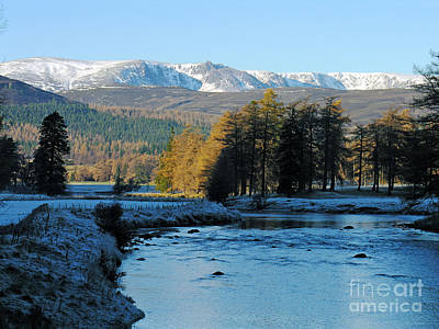 Photograph - Frost In The Glen - Invercauld by Phil Banks