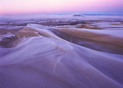 Photograph - Frost On The Dunes by Robert Potts