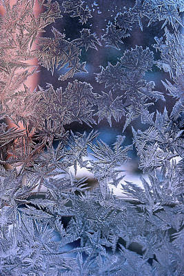 Photograph - Frost Patterns On Window 6 by Victor Kovchin