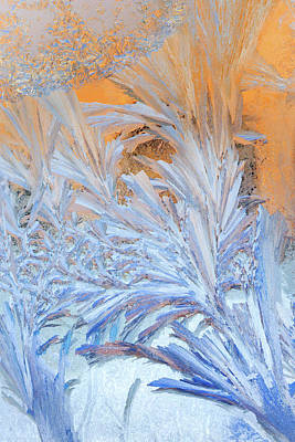 Photograph - Frost Patterns On Window by Victor Kovchin