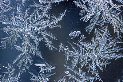 Photograph - Frost Series 10 by Mike Eingle