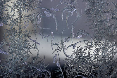 Photograph - Frost Series 8 by Mike Eingle