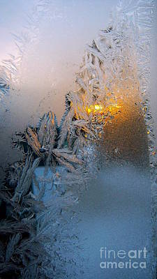 Frost Warning Art Print